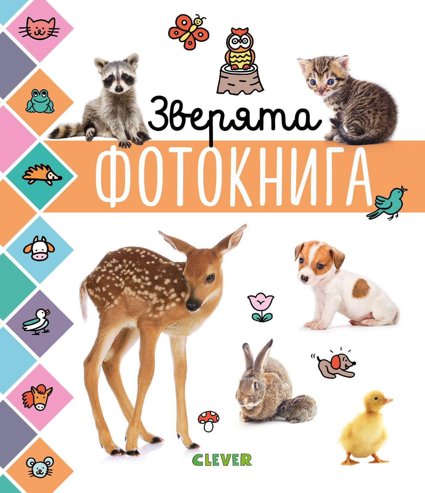 Купить Главная книга малыша. Зверята. Фотокнига, Издательство Клевер