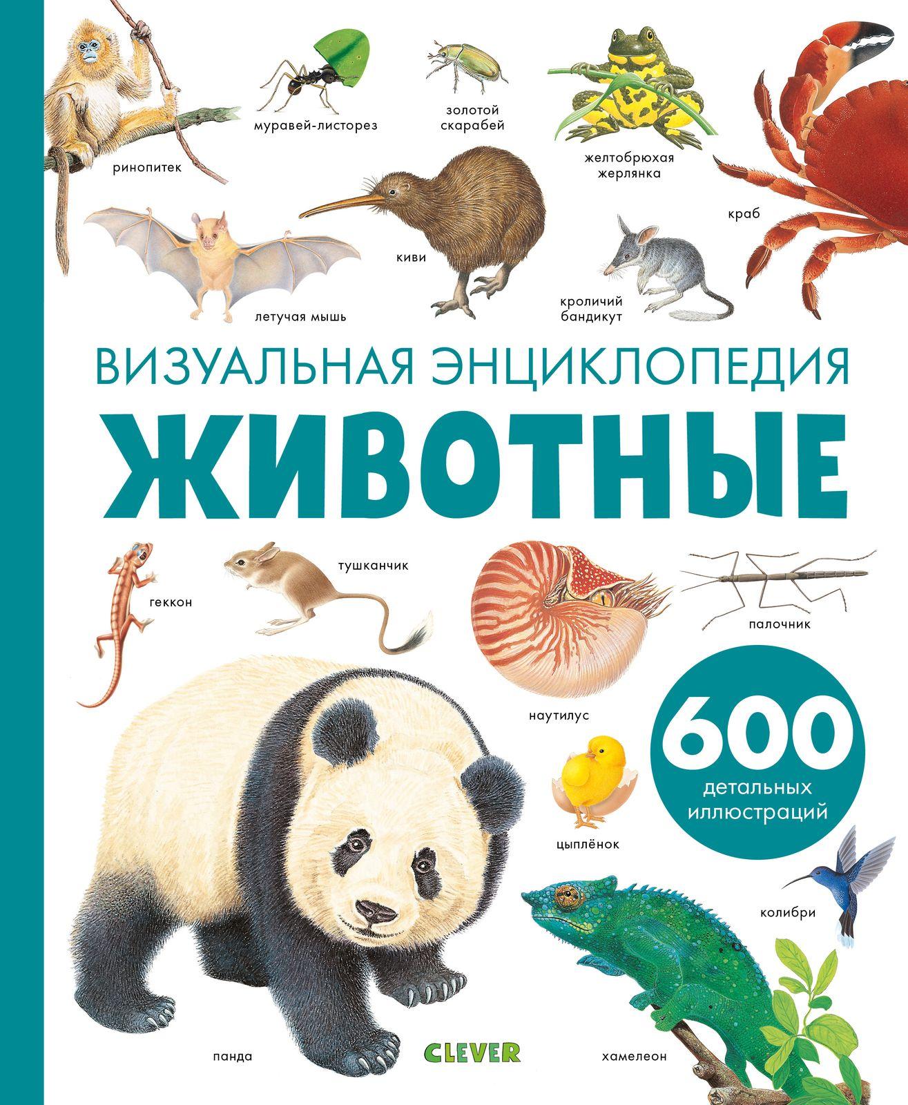 Купить Животные. Визуальная энциклопедия, Издательство Клевер