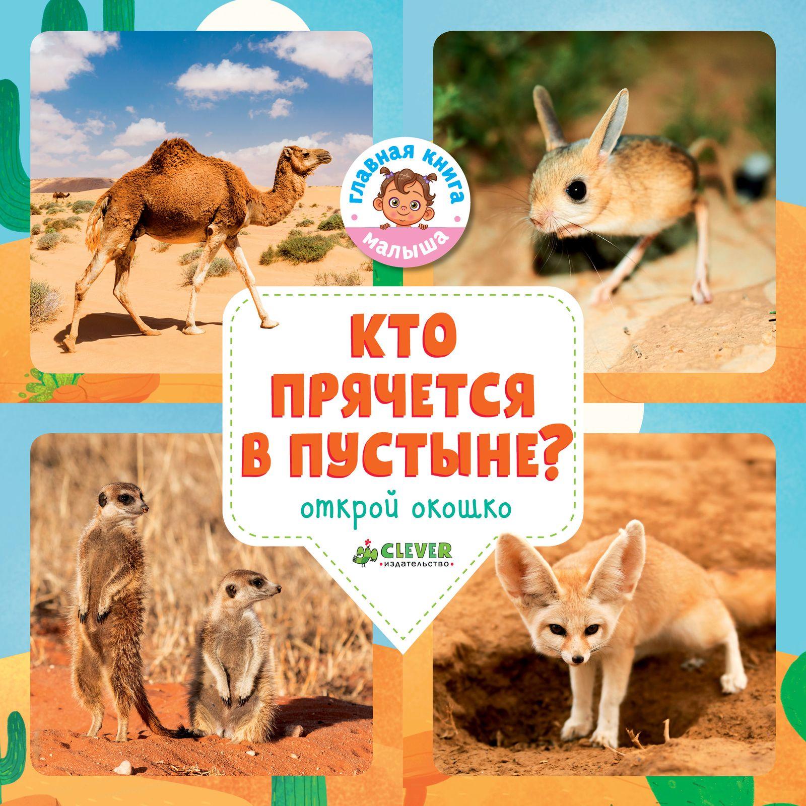 Купить Кто прячется в пустыне?, Издательство Клевер